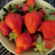 スーパーチュニア & ミリオンベル & シャインレッド & イチゴの収穫