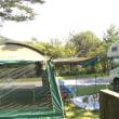 キャンプ場でバーベキュー!