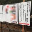 岸和田市長選挙