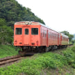 いすみ鉄道周辺散歩(小谷松ー総元)(3)