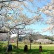 桜咲く学び舎に。