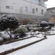 いわきでも雪が降り始めました!!