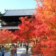 京の紅葉Ⅰ