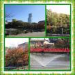 天王寺公園に行きました。