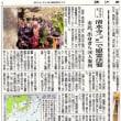 胆江日日新聞に掲載