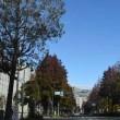 昨日はいいお天気でした。感謝しております!
