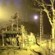 八木山動物園・ナイトズージアム