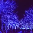 青の洞窟・渋谷・・1