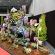 開催中 『洋らん展 in 会津若松2018 ワールドオーキッドフェスティバル』