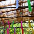 如意輪寺(かえる寺)の風鈴