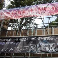 一夜城プロジェクト~よみがえれ水口岡山城~