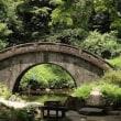 蒸暑し小石川後楽園