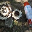 蜂の巣に挑戦