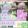 (文学・歴史)[古事記]通算314回【算太クンからの挑戦状・2018】