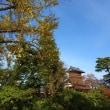 天朝山公園の紅葉 2017.11.13