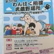 わんぱく相撲武蔵野場所 開催中