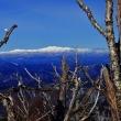 日影沢(ひかげぞ)山