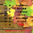10/26~11/1タイムランチのお知らせ