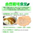 8/26(土)自然栽培食堂