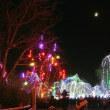 コロンバス動物園で光の祭典