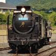 浜松生まれ、第二の人生歩み出す 有田川鉄道公園「D51 827」