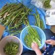 野沢温泉竹の子祭り、6月12日~21日