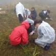 第22回湿原再生イベント終了しました。