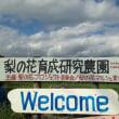 大阿太高原「RIKAEN」へ