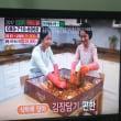 韓国っぽいテレビショッピング