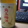 Kakutama Plum Wine