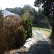 早春サイクリング 🚲♪ 横須賀市長沢の里山へ