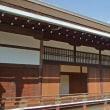 青空に誘われ京都御所と野鳥