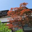 小樽 旧青山別邸