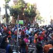 1月25日『新宿シティハーフマラソン・区民健康マラソン』開催。