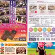 熊本での大人数の忘年会・新年会・同窓会はレストバー★スターライトへ!