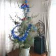 クリスマスツリーを飾って