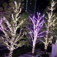 飯田橋で花火