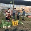 親子で参加!秋野菜の収穫体験が行われました