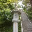 角田市妙立寺のハスが咲きました