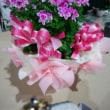 🎵 赤塚植物園で美しい花々を選び、 何よりこだわりラッピングが素敵!