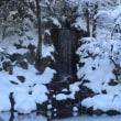冬の兼六園 ④