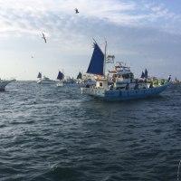 タチウオ:2016年初釣り 忠彦丸
