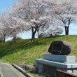 桜便り2018 ①
