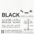 深田充夫展 BLACK 『黒の世界』