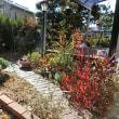 テラスウッドデッキの庭