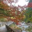 美しい木曽路の秋