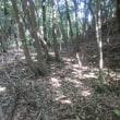 11 茶臼山(神宮寺山城230m:安佐北区)登山(続く)  山頂へのアプローチ