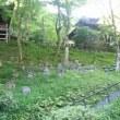 18/5/21 嵐山から愛宕念仏寺