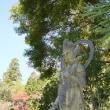 「北山杉の里」と京北の隠れ寺「崇蓮寺」