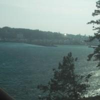 伊豆の海を見ながら・・・